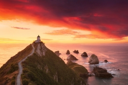 * Nugget Point *